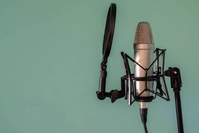 Copertura Antivento in Schiuma per Parabrezza Microfonico per Audio Technica AT2035 Microfono Filtro Antipop AT2035